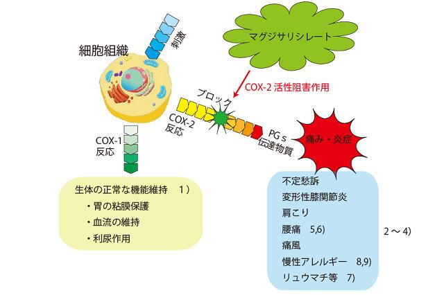 マグジサリシレートのCOX2選択抑制